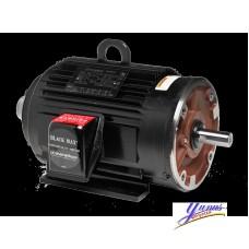 Yaskawa BlackMAX Series AC Motor